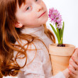 Little girl with hyacinth flowerpot — Stock Photo