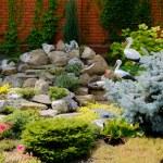 Landscape design — Stock Photo