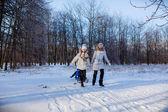 Girls with sledge — Zdjęcie stockowe