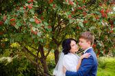 Happy newlyweds outdoor — Stock Photo