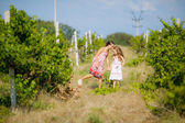 Two little girls playing on the nature — Stock Photo
