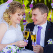 Happy newlyweds drinking champagne — Stock Photo #50286263