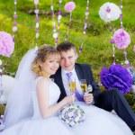 Happy newlyweds drinking champagne — Stock Photo #50287639