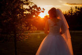 Silhouette of bride at sunset — Stock Photo