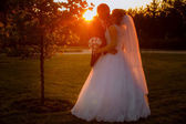 Kissing  bride and groom at sunset — Stock Photo