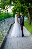 Newlyweds walking in the park — Stock Photo
