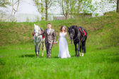 The bride and groom with horses — Foto Stock