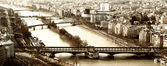 Mostra dal eiffel torre ponte bir-hakein e isolotto sulla ri — Foto Stock