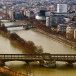 View from the Eiffel tower bridge Bir-Hakein and islet on the ri — Stock Photo
