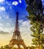 A torre e a árvore — Fotografia Stock