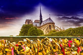 Notre Dame Cathedral from the bridge — Stock Photo