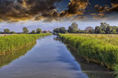 Little river with beautiful sky — Stock Photo