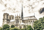 Notre Dame Cathedral, Paris — Stock Photo