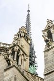 Details of Notre Dame Cathedral, Paris — Stock Photo