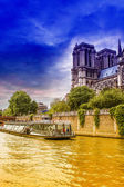Notre Dame Cathedral view from the river Seine — Foto de Stock