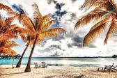 Beautiful view of the beach in Polynesia — Stock Photo