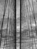 Brooklyn Bridge's cables — Stock Photo