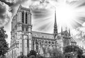 Notre dame Cathedral in Paris. — Stock Photo