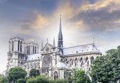 Catedral de notre dame, parís — Foto de Stock
