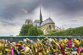 Catedral de notre dame desde el puente — Foto de Stock