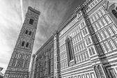 Vacker utsikt över katedralen i florens — Stockfoto