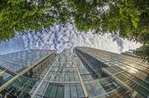 Skyscrapers, London — Stock Photo