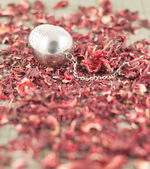 Tea infuser over red tea — Stockfoto
