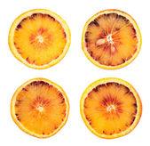 Orange fruit slice isolated — Stock Photo