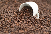 Coffee themed background composition — Stock Photo