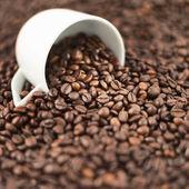 Fondo café superficial dof — Foto de Stock
