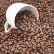 Stock Photo: Coffee beans spilled out of cup