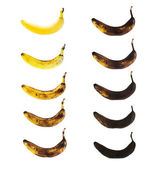 Spotless banana in a process of decompose — Stock Photo