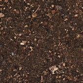 Earth covered with mulch — Stock Photo
