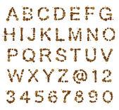 Abc алфавит из пятно пятна — Стоковое фото