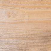 Pine tree wood texture fragment — Stockfoto