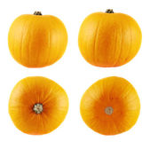 Ripe orange pumpkin isolated — Stock Photo