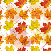 Maple-leaf seamless background — Stock Photo