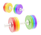 Two adjustable metal dumbbell composition — Stock Photo