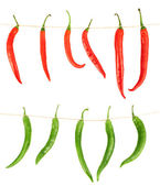 Tied chili peppers isolated — Stock Photo