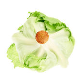 Green cabbage isolated — Stock Photo