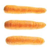 неочищенный морковь изолированные — Стоковое фото