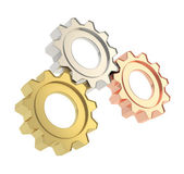 Set of a cogwheel gears — Stock Photo