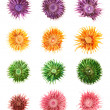 Dried medley potpourri flowers isolated — Stock Photo #46695635