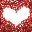 Heart shaped frame of pomegranate seeds — Stock Photo #46695755