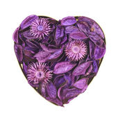 Heart filled with medley potpourri — Stock Photo