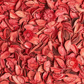 Surface covered with medley potpourri — Foto de Stock