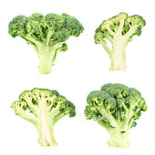 Cutaway and whole green broccoli — Stock Photo