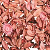 Surface covered with medley potpourri — Stock Photo