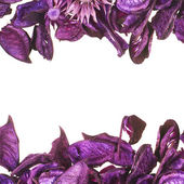 Medley potpourri copyspace composition — Stock Photo