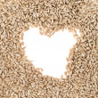 Hearth shaped sunflower seeds frame — Stock Photo #51724569
